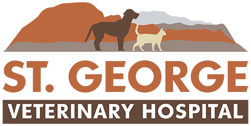 St. George Veterinary Hospital