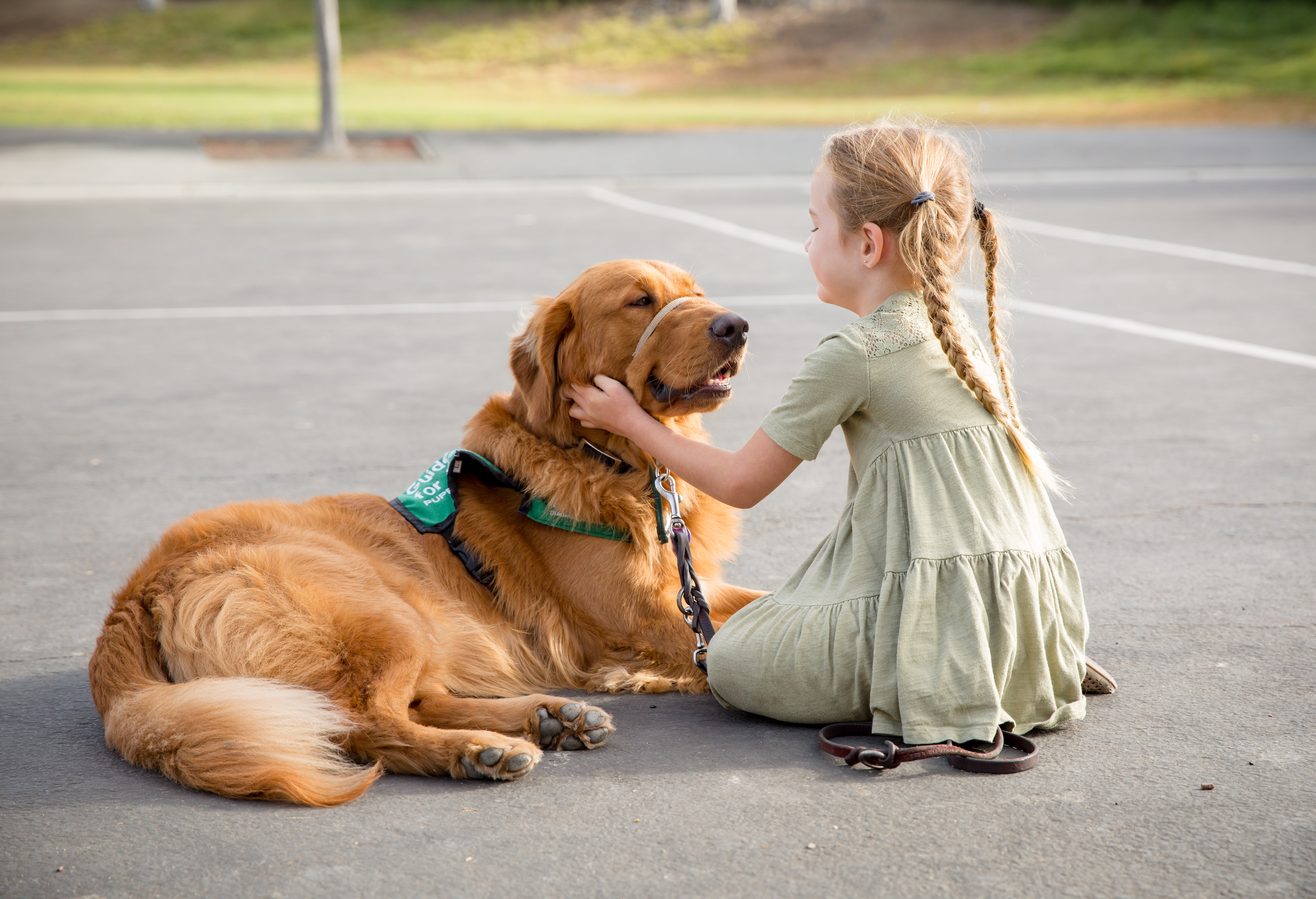 Oak Grove Elementary School Dog Offers a Helping Paw to Students and Staff