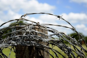 spool of barbed wire around a pole