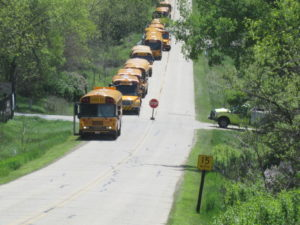 Some of the buses that brought participants to MOHEE.