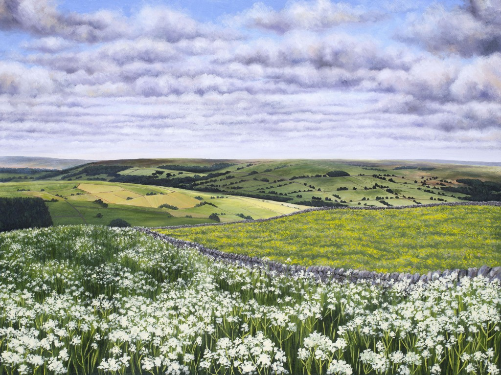 Oil painting, yorkshire dales art, nidderdale, countryside, buttercups, springtime.
