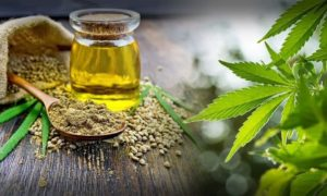 15 Surprising Facts About What Is Hemp Oil Used For