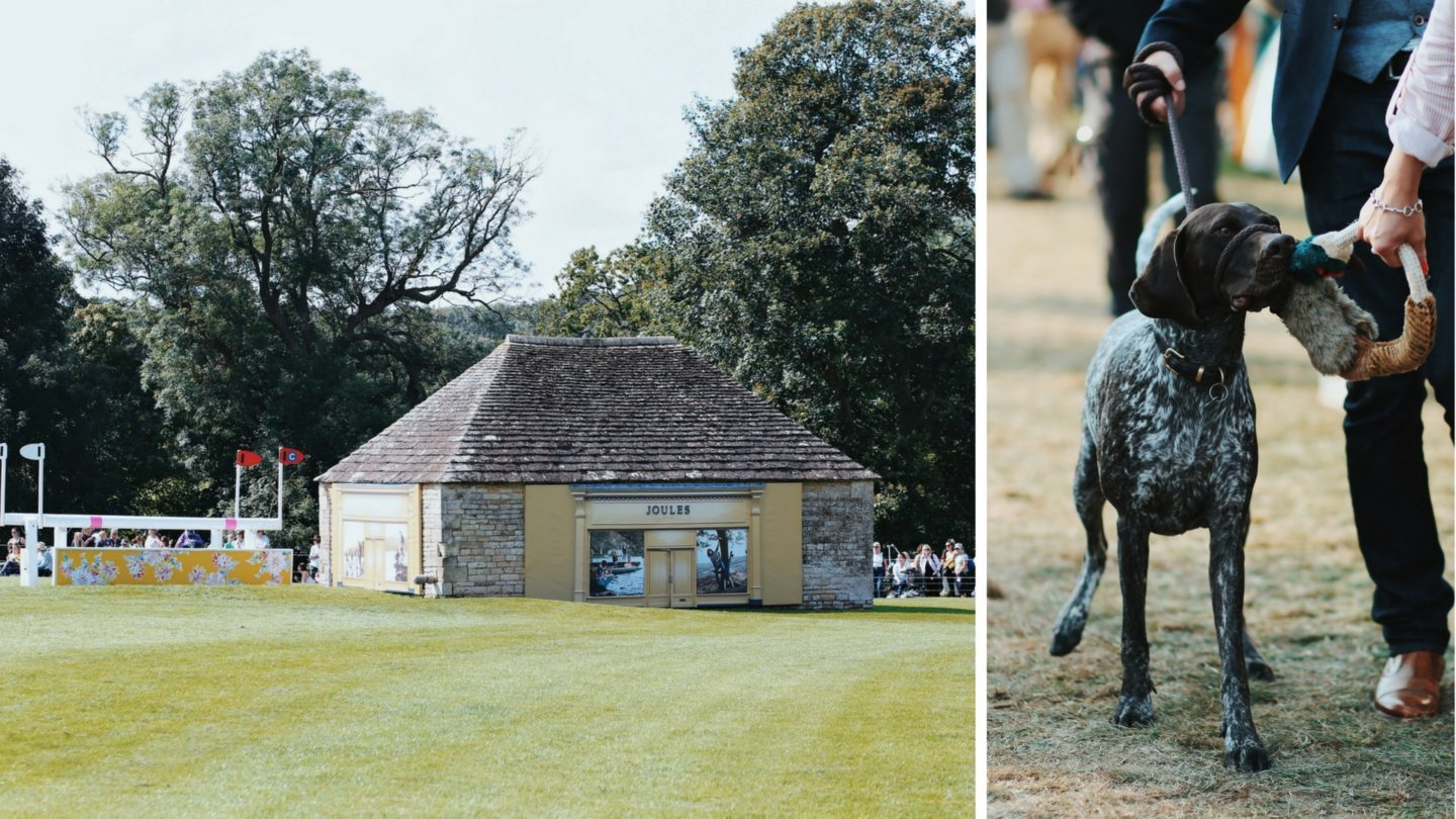 I've been invited - Burghley Horse Trials with Joules