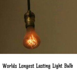 worlds longest lasting light bulb