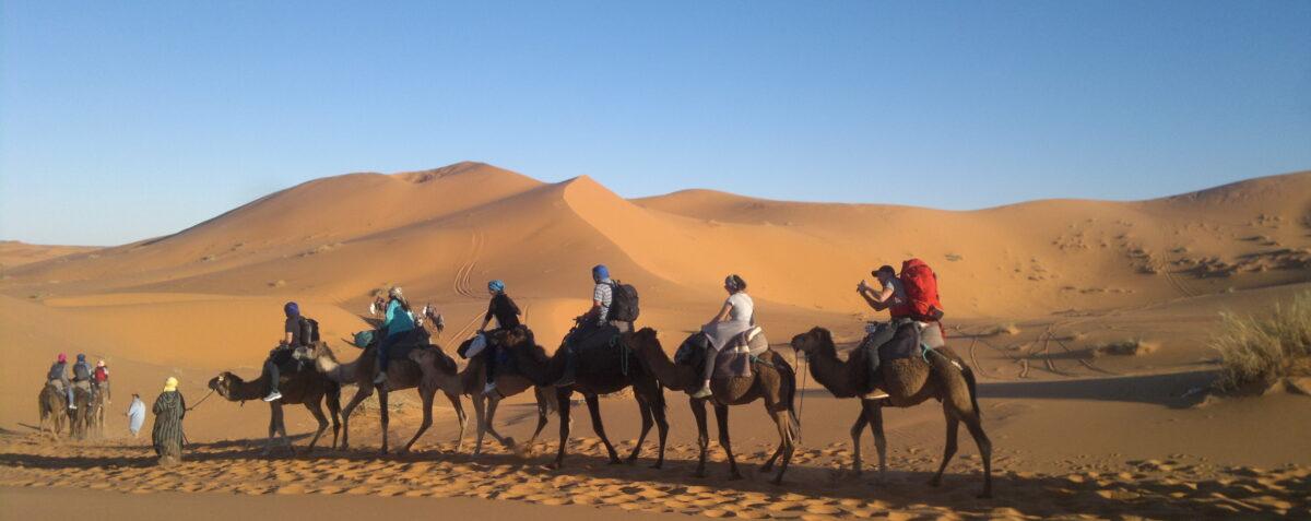 Au Bonheur Des Dunes