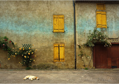 Let sleeping dogs lie. Somewhere in France!