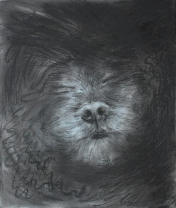 Freddy_dream_charcoal_M_Dorn_edited-1