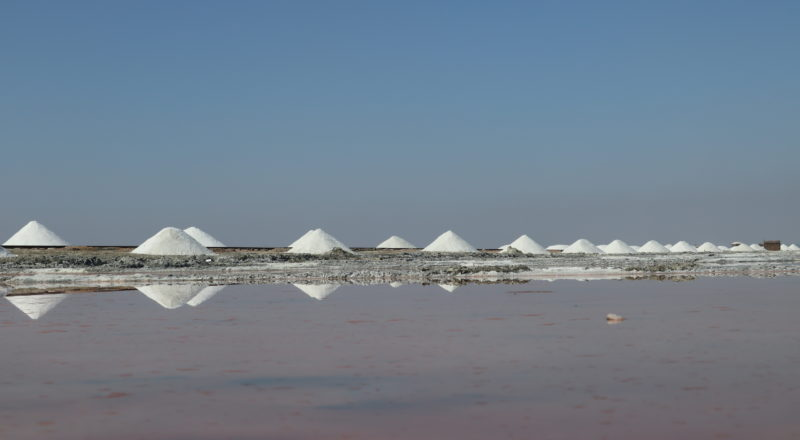 destinations : Samabhar salt lake, jaipur