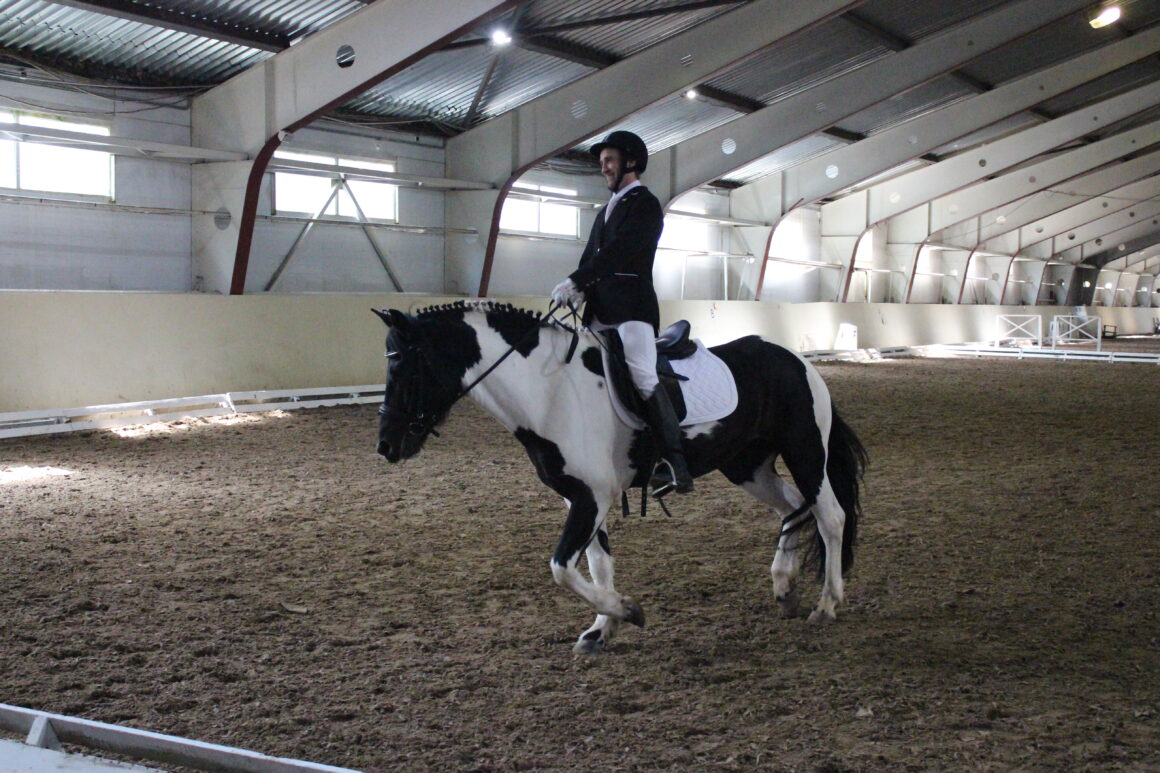 3rd World Intellectual Impairment Sport Para Equestrian Video Competition