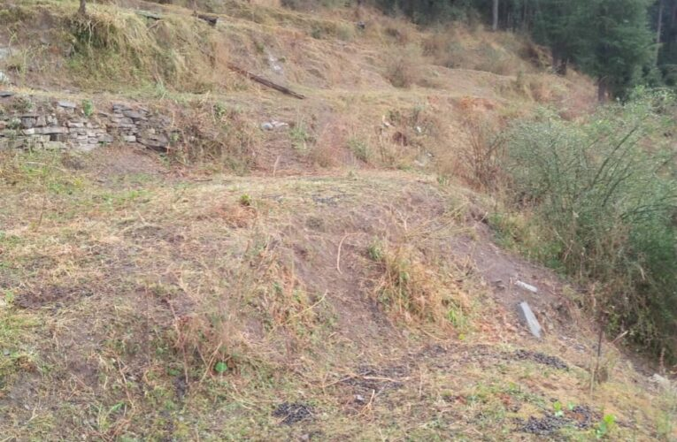 28 Bigha land For Sale at Kufari – Chail Road Himachal Pradesh —– Drive in —- 1 km Link From Main Road —- Usable For Hotel,Resort and Villas —– Beautiful View —- Price – 18 Lakhs Per Bigha