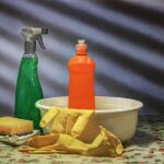 Key Aspects of Home Cleaning Business Opportunities in Australia