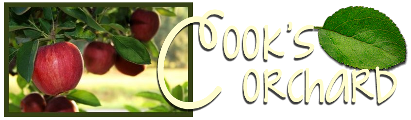 Cook's Orchard
