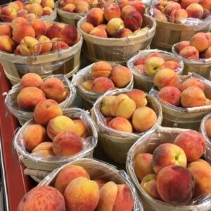 We now have Red Haven peaches!