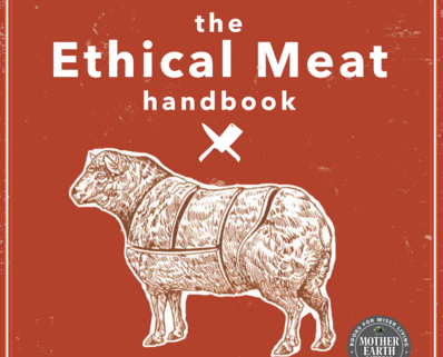 With 'The Ethical Meat Handbook,' Asheville author cuts her own path toward sustainability