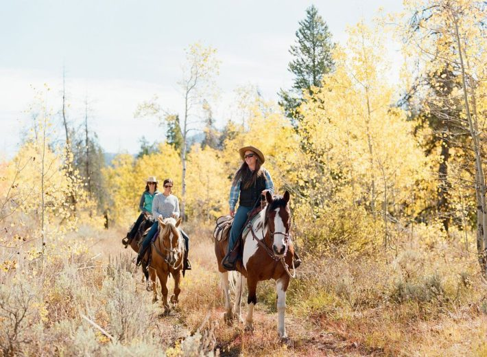 Horseback riders enjoy a trail ride at Turpin Meadow Ranch in Jackson Hole Wyoming during the Fall Foliage
