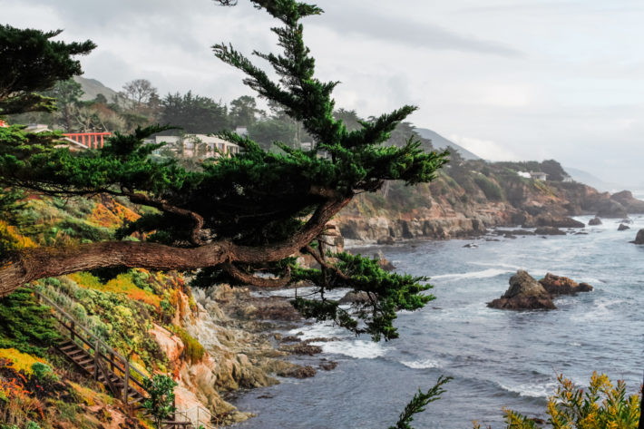 Carmel California Coastline