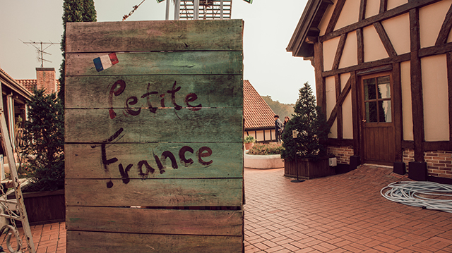 petite france - a cup of owl