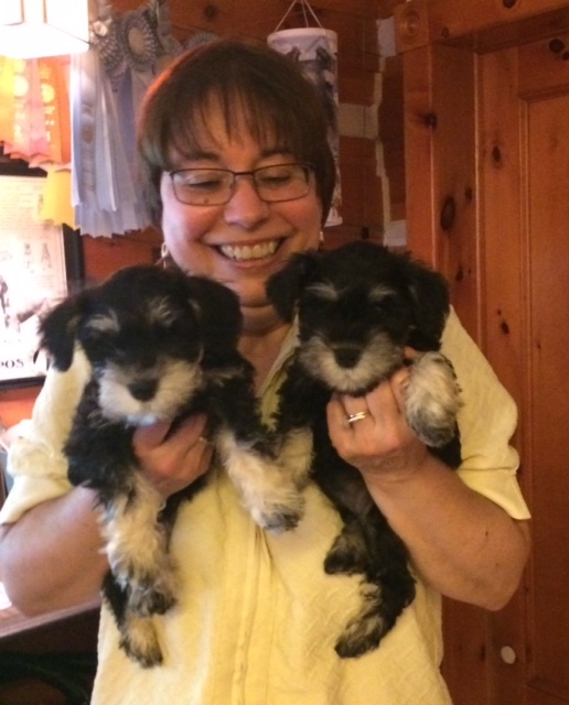 Beautiful Puppies ready for Home!