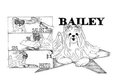 Pixies-World_cartoons-1200px-bailey_diva_lg