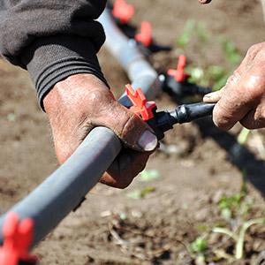 optimized irrigation system