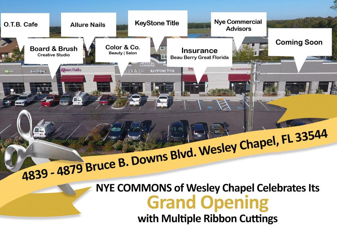 NYE COMMONS of Wesley Chapel