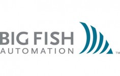 Big Fish Automation