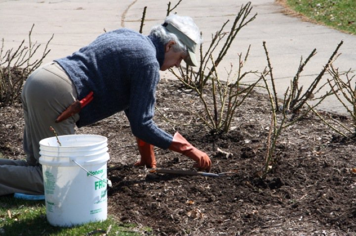 Planting Day 2011 – 15