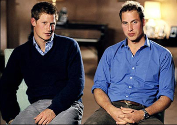 Princes Harry and William have gained much popularity in recent years.