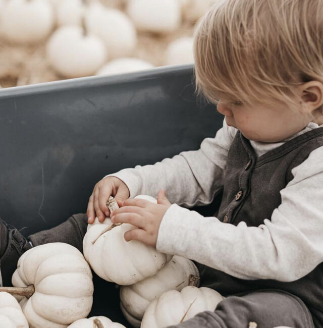 Boy and White Pumpkins