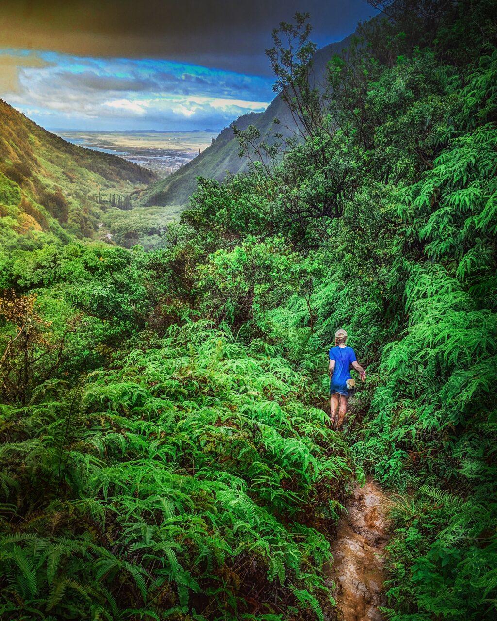 Woman hiking on dirt Tableland Secret Trail in mountainous Hawaiian jungle, Iao Valley, Maui.