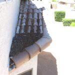 Bird droppings blocking drainage