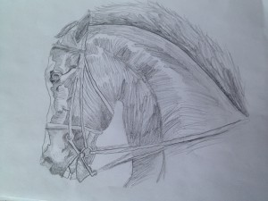 Horse Drawing, March 2, 2013