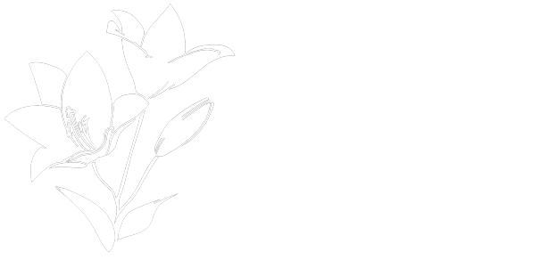 Lily Nails - Huntley IL | (847) 669-6998