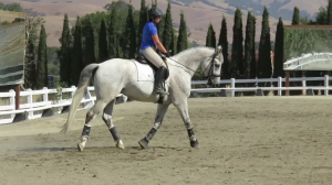 Carla and Feety taking a lesson from Ellen Eckstein