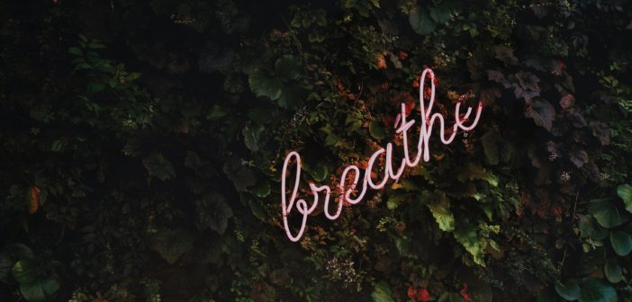 "Liz Newman Reviews: ""Breathe, Girl"" Written by Niya McCray"