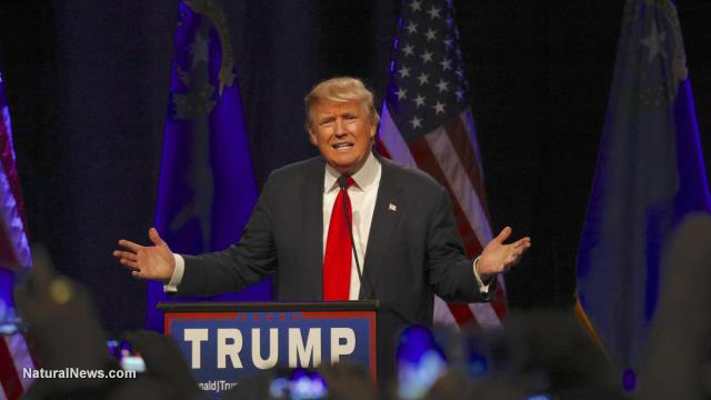 editorial-use-donald-trump-hands-out-campaign