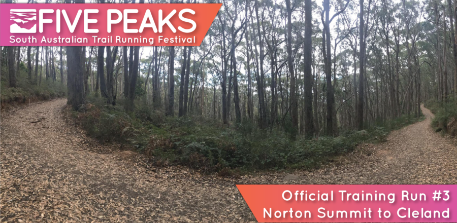 CANCELLED DUE TO HOT WEATHER Five Peaks Official Training Run #3 – Norton Summit to Cleland (16 km or 12km)