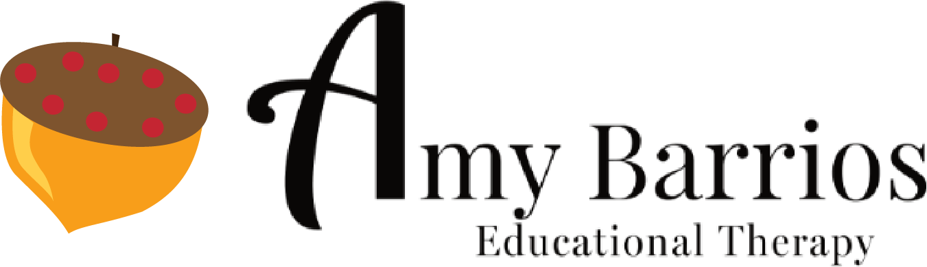 Amy Barrios   Educational Therapy
