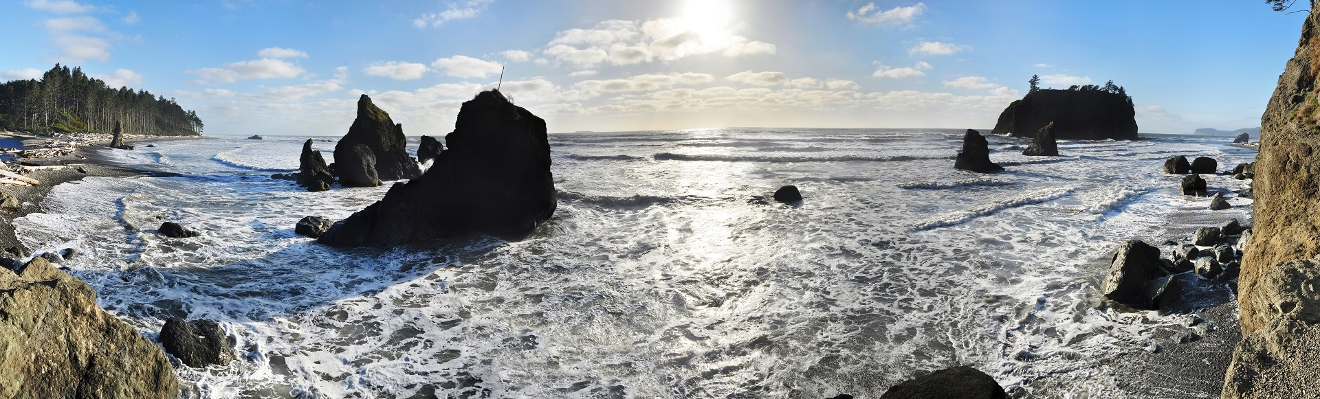 Blog Page Image is of Late afternoon in September on the shores of Ruby Beach in Olympic National Park