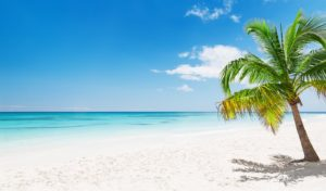 Punta  Cana, The  Picture-Perfect  Beach  Getaway