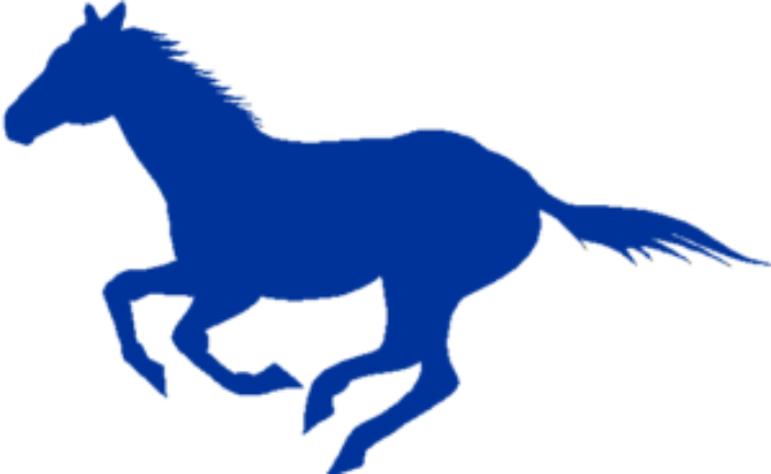 Mustang's Baseball Season Concludes
