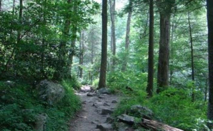 Rainbow Falls Trail Rehab Project Begins Soon
