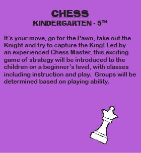 Enrichment-Chess-80