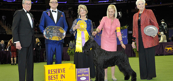 Jet Charter to the Westminster Kennel Club Dog Show