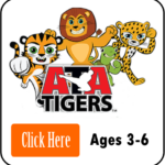 MBR- Tigers Icon