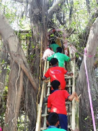 Friends of Trees have a Fairy House in Patna