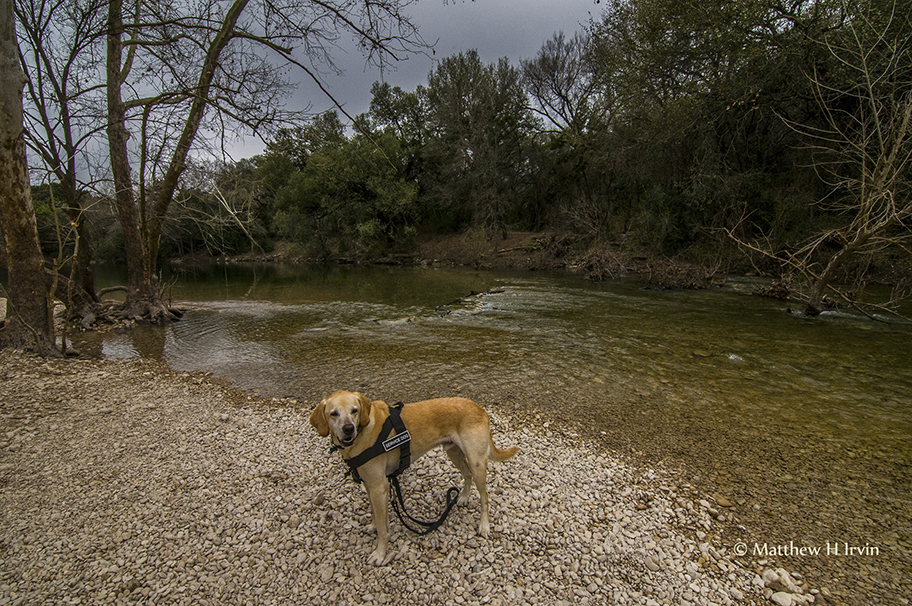 Having fun at Barton Creek Greenbelt Park.