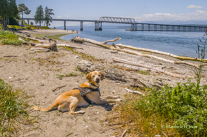 At the Canal Bridge before Port Townsend.