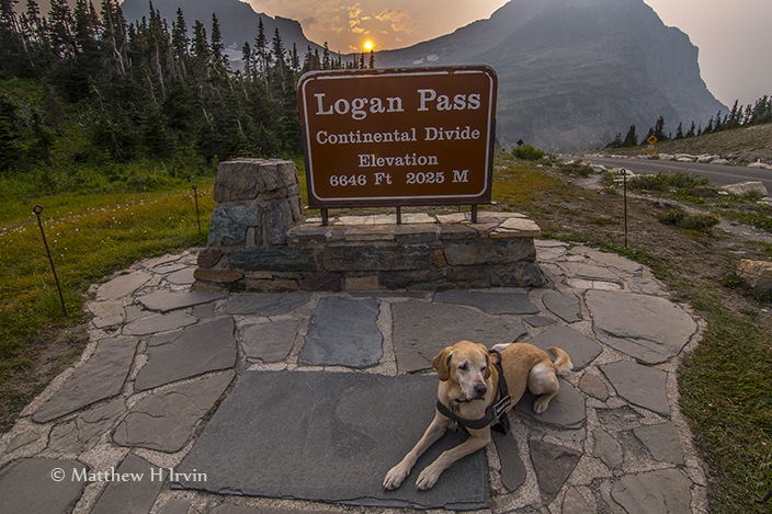 Me at Logan Pass.