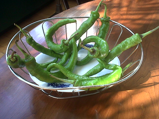 green peppers 2